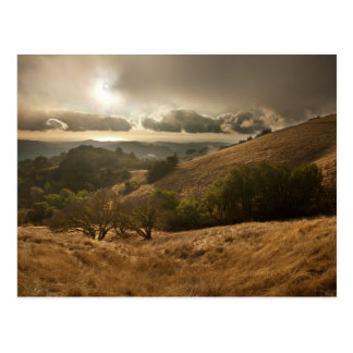 Season's First Rain Postcard