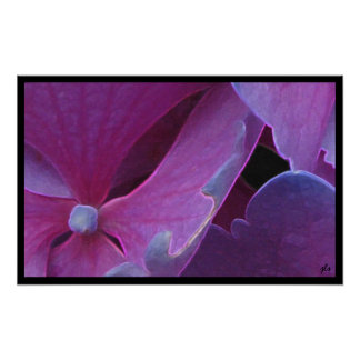 seasons:  flora series [winter] print