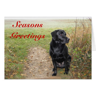 Seasons Greetings - Black Lab Card