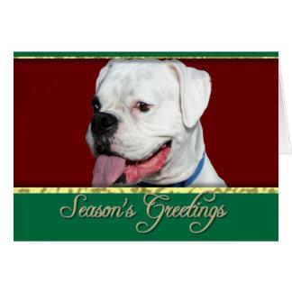 Season's greetings Boxer dog card