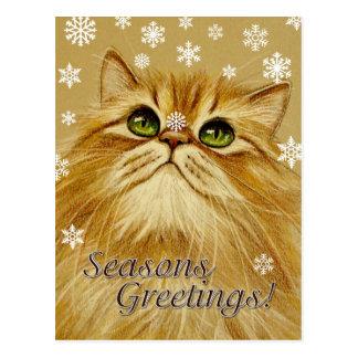 Seasons Greetings Cat & Snow - Postcard