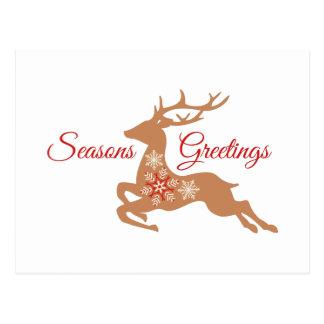Seasons Greetings Deer Postcard