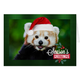 Seasons Greetings from Red Panda Santa Card