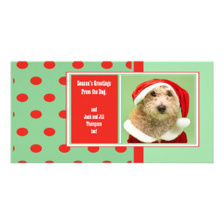 Season's Greetings From the Dog Cute Photo Card Template