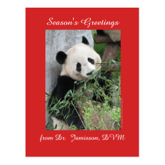 Seasons Greetings from Vet, Veterinarian, Postcard