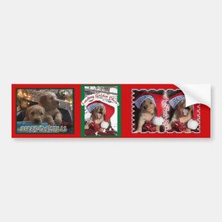 Seasons Greetings GOLDEN RETRIEVER CHRISTMAS PUPPY Car Bumper Sticker