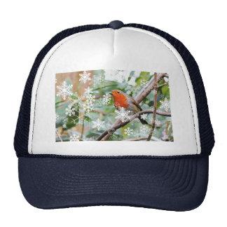 Season's Greetings! Trucker Hat