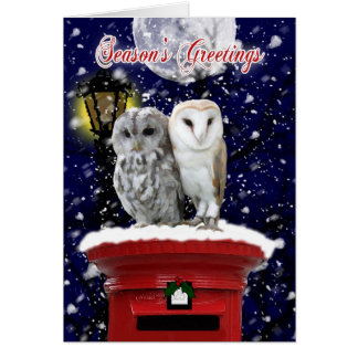 Season's Greetings Holiday Card With Winter Owl's