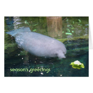 season's greetings - lettuce greeting card