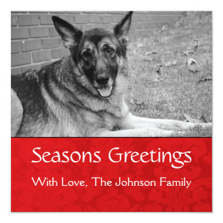 Seasons Greetings Red Background Photo Template 13 Cm X 13 Cm Square Invitation Card