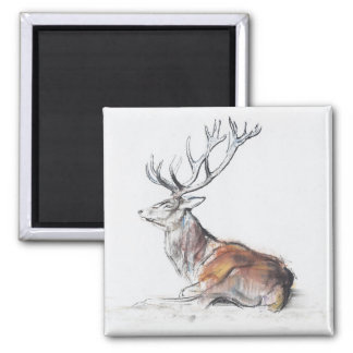 Seated Stag 2006 Square Magnet