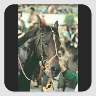 Seattle Slew Thoroughbred 1978 Square Sticker