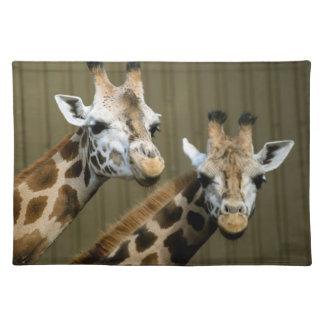 Seattle, Washington. Two giraffes Place Mats