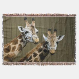 Seattle, Washington. Two giraffes Throw Blanket