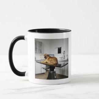 Seattle, Washington, USA 2 Mug