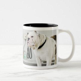 Seattle, Washington, USA Two-Tone Coffee Mug