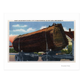 Seattle, WashingtonGiant Log en route to Mill Postcard