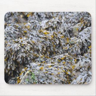 Seaweed Mouse Mat