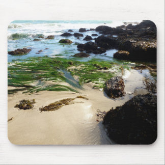 Seaweed on a Beach Mouse Pad