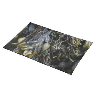 Seaweed. Placemat