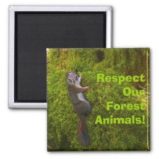SEBASTIAN SQUIRREL Environmental Earth Day Fridge Magnets