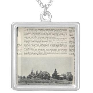 Sebastopol, California Silver Plated Necklace