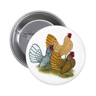 Sebright Rooster Assortment 6 Cm Round Badge