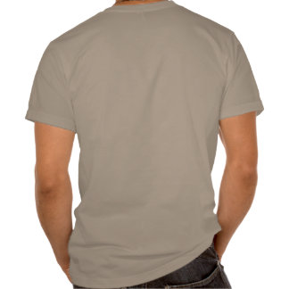 Second amendment shirt