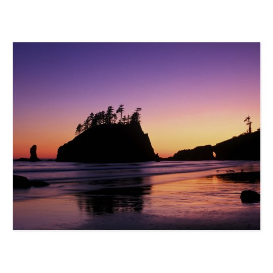 Second Beach at Twilight, Olympic NP, WA, USA Postcard
