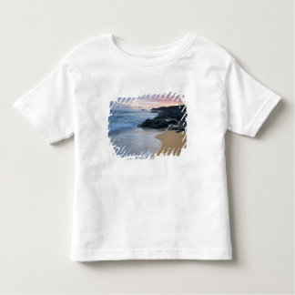 Secret Beach at dawn Toddler T-Shirt