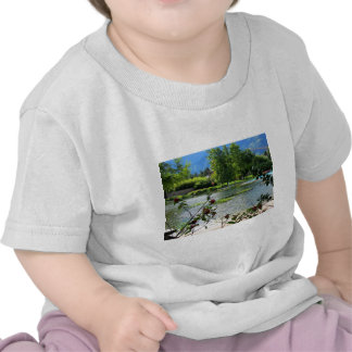 Secret pond on a beautiful sunny day t shirts