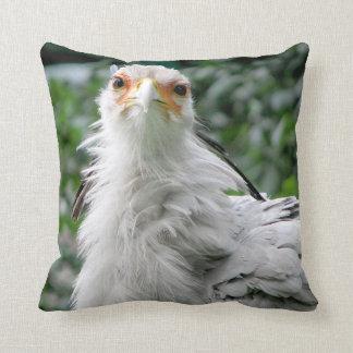 Secretary Bird Cushion