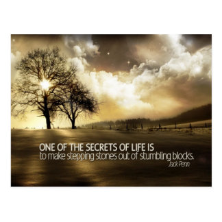 Secrets Of Life Postcard