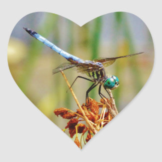 Sedge grass, and Dragonfly Heart Sticker