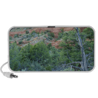 Sedona Mountain trails iPod Speakers
