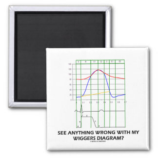 See Anything Wrong With My Wiggers Diagram? Square Magnet
