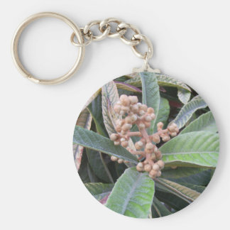 see it basic round button key ring