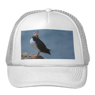 See Me Puffin Hat