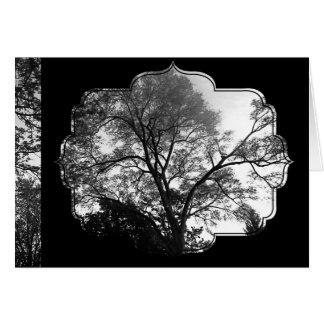 See My Tree Greeting Card
