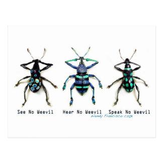 See No Weevil! Postcard