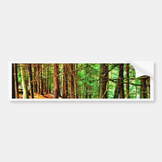See the Forest for the Trees Bumper Sticker