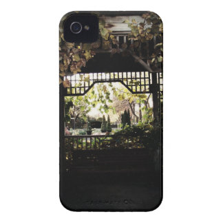 See Through iPhone 4 Case