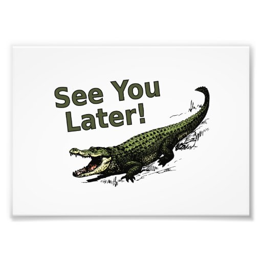 See You Later Alligator Photographic Print