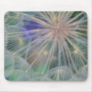 Seed Head Design | Gennesse, Idaho Mouse Mat
