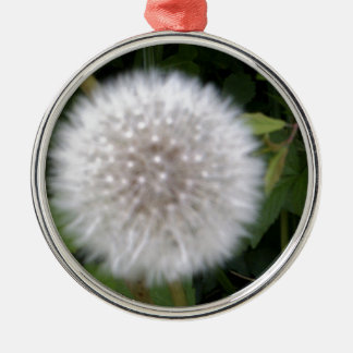 Seeded Dandelion head Silver-Colored Round Decoration