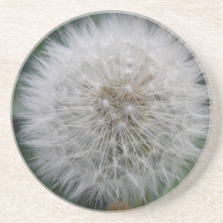 Seeding Dandelion Flower Coasters