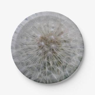 Seeding Dandelion Flower Paper Plate