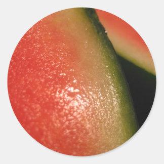 seedless watermelon classic round sticker