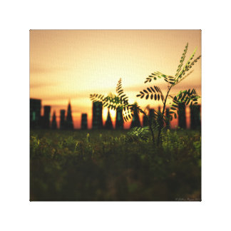 Seedling Canvas Print