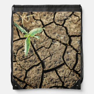 Seedling In Cracked Earth Backpacks